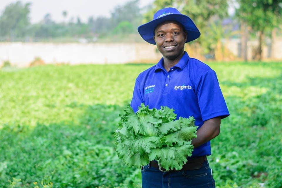 Kudakwashe Mugwagwa in lettuce field.